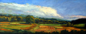 Hutchin's Farm-Long View   20 x 44   sold